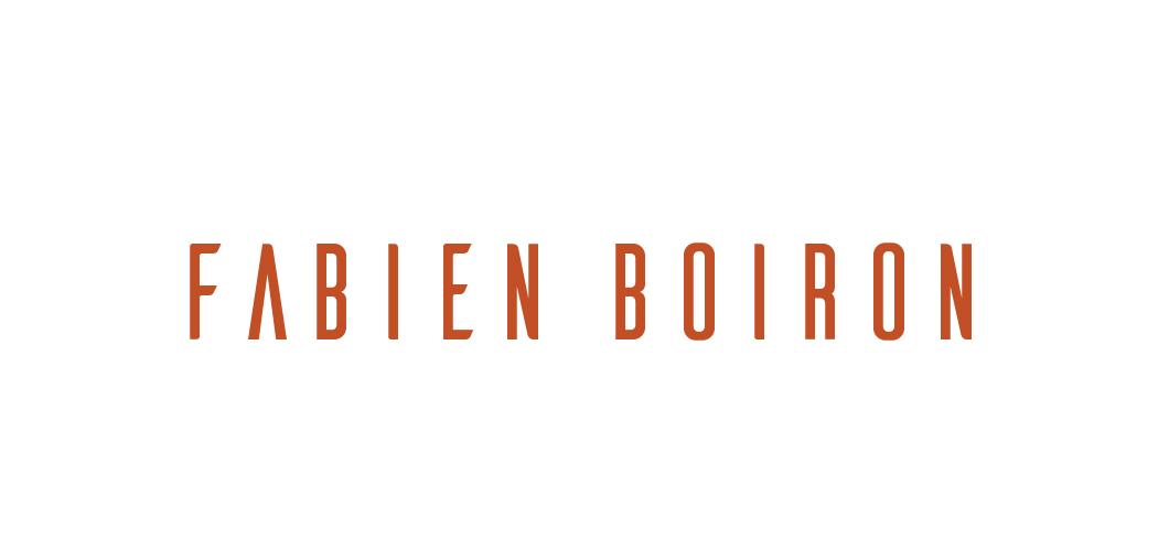 Fabien Boiron Reining Horses